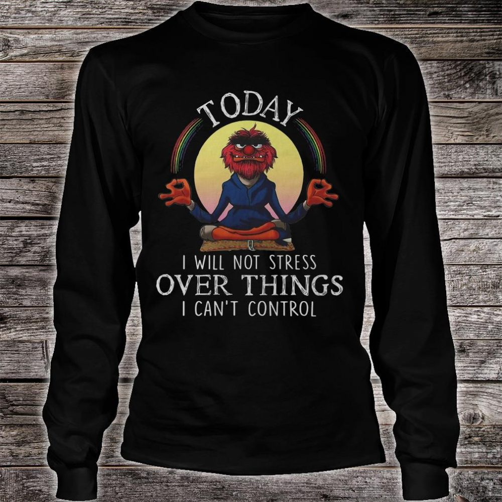 Today i will not stress over things i can't control shirt long sleeved